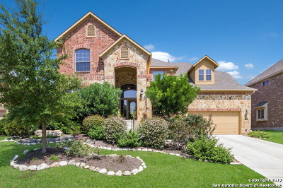 Cibolo Canyons Single Family Home For Sale: 3531 Crest Noche Dr