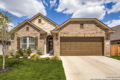 Single Family Home For Sale: 2030 Tillman Park