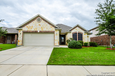 Schertz Single Family Home For Sale: 3544 Irish Creek Rd