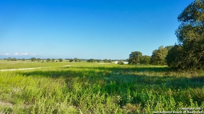 Wilson County Residential Lots & Land For Sale: 43.79 Acres Champions Blvd.