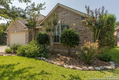 Stonewall Estates, Stonewall Ranch Single Family Home For Sale: 515 Aster Trl