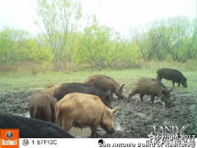 Atascosa County Farm & Ranch For Sale: 20.02 Acres Cr 334