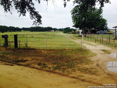 Atascosa County Single Family Home For Sale: 490 Hernandez Rd