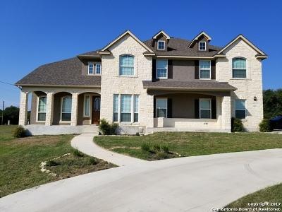 San Antonio Single Family Home For Sale: 28315 Verde Mtn Trl