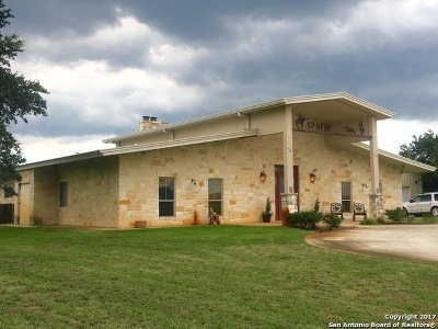 Atascosa County Farm & Ranch For Sale: 2355 Crane Rd
