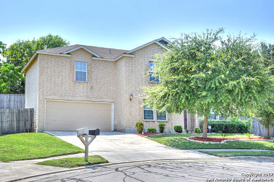 Converse Single Family Home For Sale: 10202 Chuck Wagon Ct