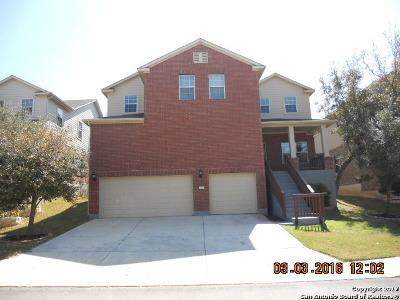 San Antonio Single Family Home Back on Market: 25626 Wentink Ave