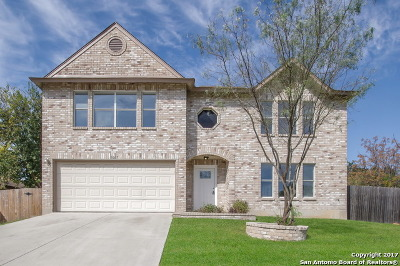 Bexar County Single Family Home For Sale: 5007 Hidden Well Dr