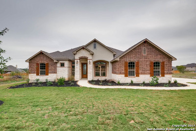 Bexar County Single Family Home For Sale: 14826 Peoples Drive