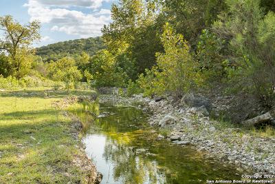 Bandera County Farm & Ranch For Sale: 502 Edna Ln