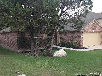 San Antonio TX Single Family Home For Sale: $289,000