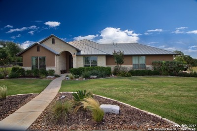 New Braunfels Single Family Home For Sale: 1326 Vintage Way