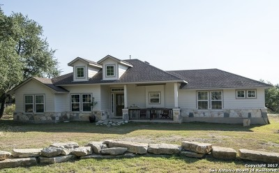Bandera County Single Family Home For Sale: 233 Spotted Horse Trl