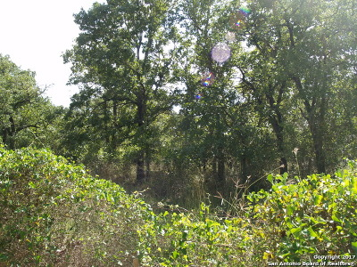 Guadalupe County Residential Lots & Land For Sale: 1350 Lot 2 Cross Rd