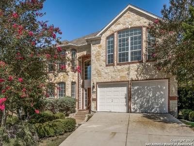 Single Family Home For Sale: 1011 Alpine Pond