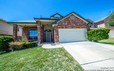 Helotes Single Family Home For Sale: 14019 Jubilee Way