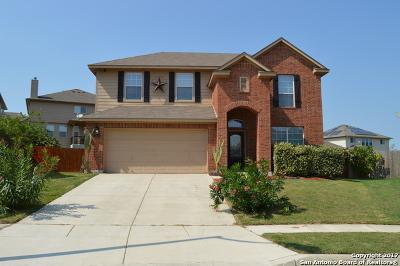 Cibolo Single Family Home New: 244 Comanche Trl