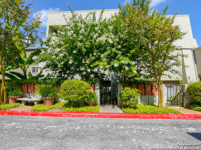Bexar County Condo/Townhouse For Sale: 3103 Eisenhauer Rd #K-17