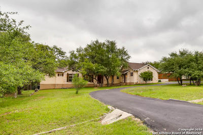 New Braunfels Single Family Home New: 139 Paradise Hls