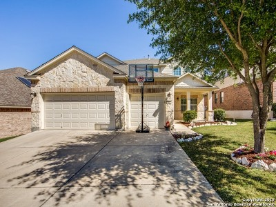 Bexar County Single Family Home For Sale: 3411 Marlark Pass