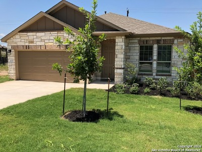Bexar County Single Family Home For Sale: 11535 Sangria