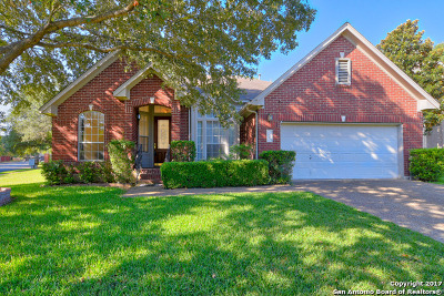 San Antonio Single Family Home For Sale: 13403 Hollow Creek Dr