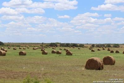 Wilson County Farm & Ranch New: Cr 136 Fm 2505
