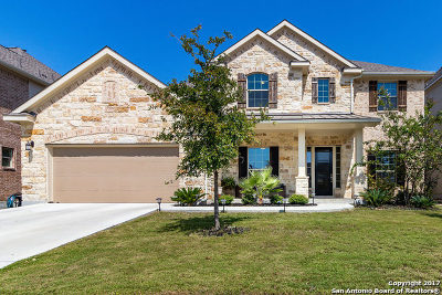 San Antonio Single Family Home New: 24310 Vinca Reef