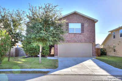 Single Family Home For Sale: 12506 Nine Iron Way