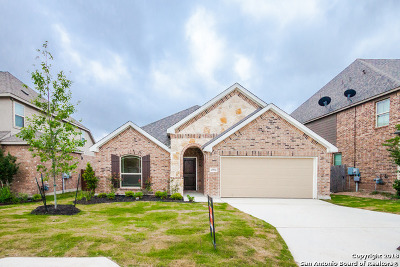 Bexar County Single Family Home For Sale: 13934 Annuziata