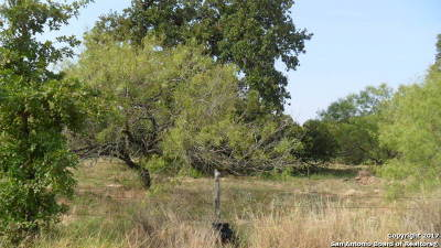Atascosa County Residential Lots & Land New: Lot 4 Fm 3175