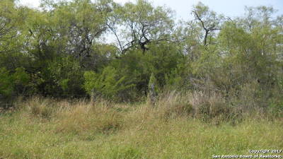Atascosa County Residential Lots & Land New: Lot 6 Fm 3175