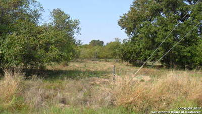 Atascosa County Residential Lots & Land New: Lot 2 Fm 3175