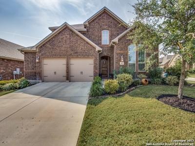 San Antonio Single Family Home New: 3802 Palma Mesa