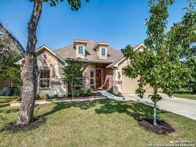 San Antonio Single Family Home New: 29011 Gooseberry