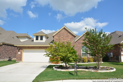 Bexar County Single Family Home New: 12243 Chambers Cv