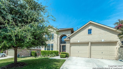 Cibolo Canyons Single Family Home New: 3411 Hilldale Pt