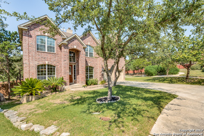 Bexar County Single Family Home New: 2035 Laurel Park