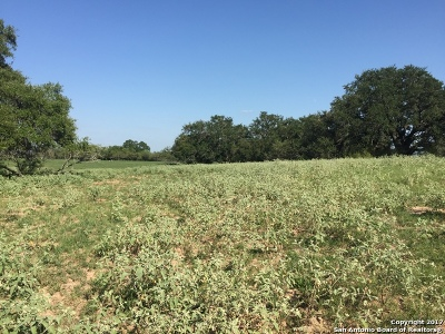Residential Lots & Land For Sale: 41.255 Ac La Vernia Rd
