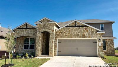 New Braunfels Single Family Home New: 332 Lillianite