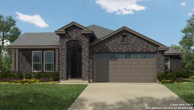 New Braunfels Single Family Home New: 356 Lillianite