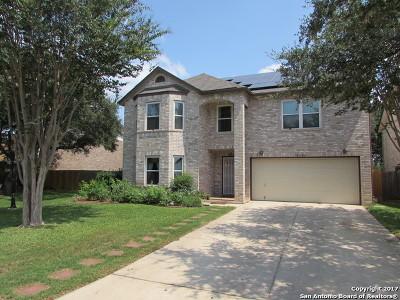 San Antonio Single Family Home For Sale: 18110 Redriver Sky