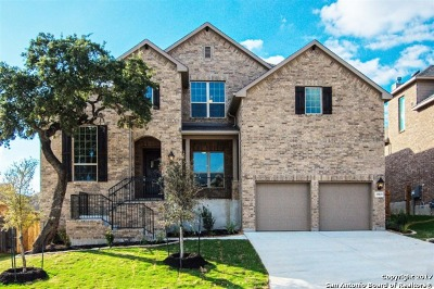 San Antonio Single Family Home New: 25819 Green Terrace