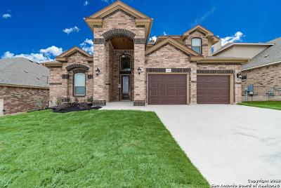 Single Family Home New: 13614 Falls Summit
