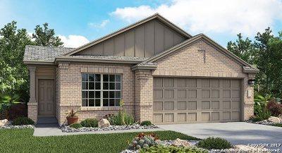 San Antonio Single Family Home New: 7110 Azalea Square