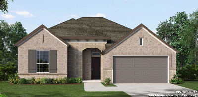 Single Family Home For Sale: 907 Hi Path Way