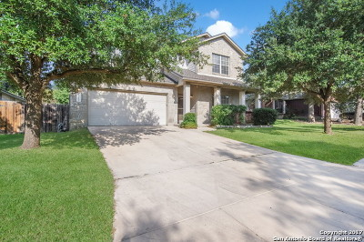 San Antonio TX Single Family Home New: $248,000