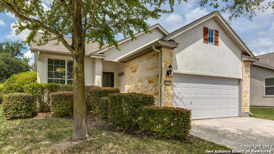 San Antonio TX Single Family Home New: $245,000