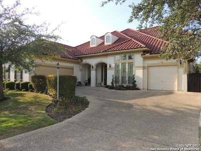 San Antonio TX Single Family Home New: $499,900