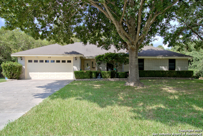 Seguin Single Family Home For Sale: 113 Whitetail Holw